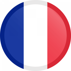 France_icon